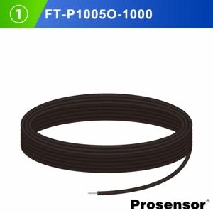 FT-P1005O
